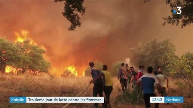 Algérie : les incendies frappent toujours en Kabylie