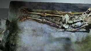 Pompéi :les archéologues ont découvert une momie très bienconservée (France 3)