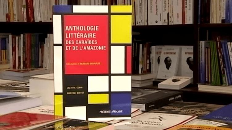 """""""L'anthologie littéraire des Caraïbes et de l'Amazonie""""  (FranceÔ / culturebox)"""