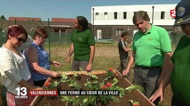 Valenciennes : une ferme au cœur de la ville