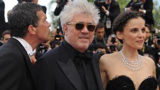 Le cinéaste espagnol Pedro Almodovar lors de son dernier passage sur le tapis rouge du festival de Cannes, le 19 mai 2011. (ANNE-CHRISTINE POUJOULAT / AFP)