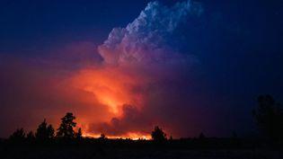 """Des images du """"Bootlge fire"""" qui ravage une partie de l'Oregon aux Etats-Unis, le 14 juillet 2021. (JOHN HENDRICKS / OREGON OFFICE OF STATE FIRE MARSHAL / AP)"""