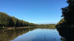 La Ferté-Vidame dans l'Eure-et-Loir. (PIERRE-YVES BONNOT)