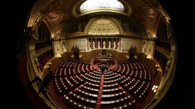 L'hémicycle du Sénat (AFP - JOEL SAGET)