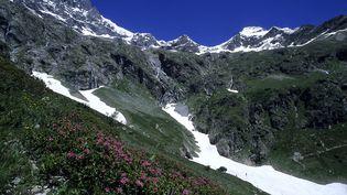 Le massif des Ecrins (Hautes-Alpes), le 4 juin 2014. (COUPE-FRANCEDIAS/ ONLYFRANCE / ONLY FRANCE / AFP)