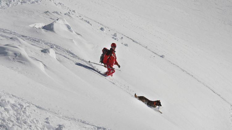 Un exercice avec sauveteurs et chiens d'avalanches, dans la vallée d'Ossau, dans les Pyrénées-Atlantiques, le 2 février 2010. (MAXPPP)