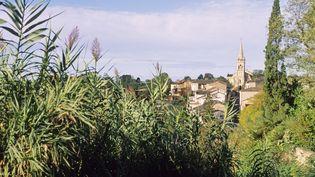 Le village de Meilhan-sur-Garonne (Lot-et-Garonne), le 15 février 2008. (BRUNO BARBIER / AFP)
