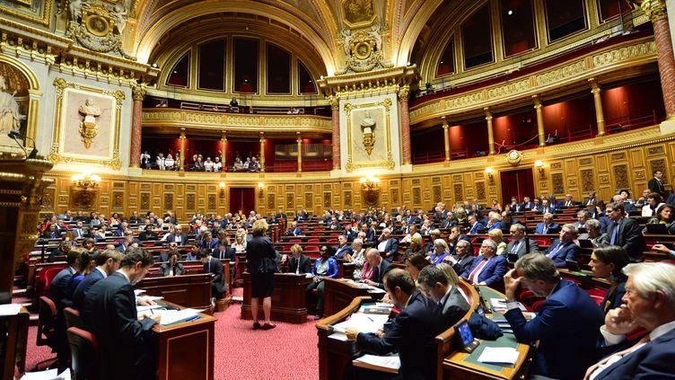 Le Sénat français, le 24 septembre 2019, lors des questions au gouvernement (photo d'illustration). (DANIEL PIER / AFP)