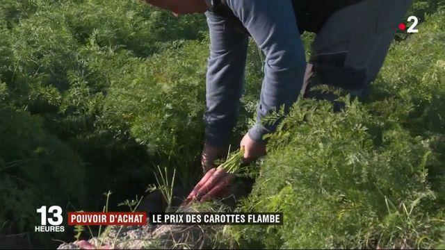 Pouvoir d'achat : le prix des carottes flambe