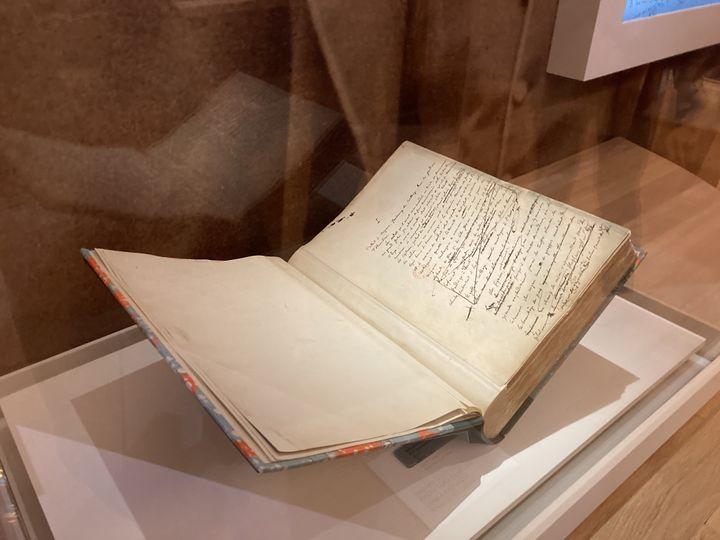 """Manuscrit de Salammbô,exposition""""Salammbô Fureur ! Passion ! Eléphants"""", au musée des Beaux-Arts de Rouen, le 25 mai 2021 (Laurence Houot / franceinfo Culture)"""