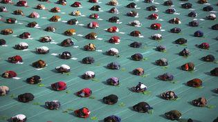 Des enfants participent à un cours collectif de yoga à Ahmedabad (Inde), le 9 janvier 2012. (AMIT DAVE / REUTERS)
