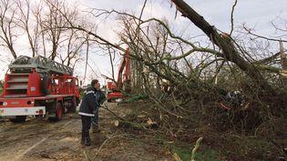 Les pompiers déblaient la D511 entreSaint-Pierre-sur-Diveset Falaise,le 26 décembre 1999. (MYCHELE DANIAU / AFP)