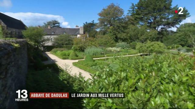 Abbaye de Daoulas : un jardin de plantes médicinales aux mille vertus