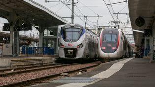 Deux trains stationnés en gare de Toulouse Matabiau (Haute-Garonne) le 20 octobre 2019,au troisième jour d'un mouvement social des cheminots qui font valoir leur droit de retrait, après un accident dans les Ardennes. (FREDERIC SCHEIBER / HANS LUCAS / AFP)