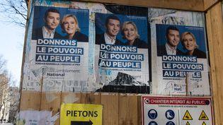 Des affiches de campagne du Rassemblement national, à Paris en février 2019. (RICCARDO MILANI / HANS LUCAS / AFP)