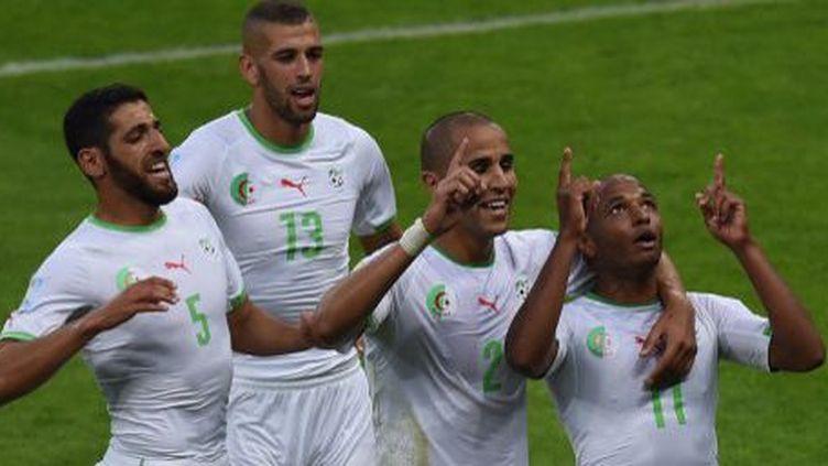Joie des joueurs algériens (Yacine Brahimi, Rafik Halliche, Islam Slimani,Madjid Bougherra)lors du match victorieux contre la Corée du Sud en phase de poule de la Coupe du monde, le 22juin 2014. (PEDRO UGARTE / AFP)