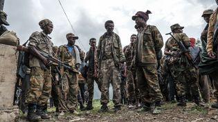 Des membres de la milice Amhara se rassemblent dans le village d'Adi Arkay, à 180 kilomètres au nord-est de la ville de Gondar, en Ethiopie, le 14 juillet 2021. (EDUARDO SOTERAS / AFP)