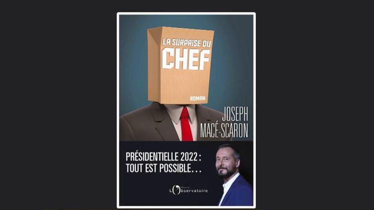 """Livre : """"La surprise du chef"""", une fiction sur la campagne présidentielle de 2022 (Capture d'écran franceinfo)"""