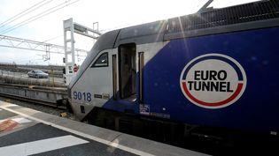 Une navette Eurotunnel, le 10 avril 2014 à Coquelles (Pas-de-Calais). (DENIS CHARLET / AFP)