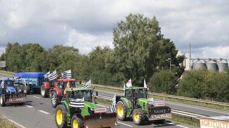 Les tracteurs partis de Bretagne convergent vers Paris, le 1er septembre 2015. (CITIZENSIDE / EMMANUELLE RODRIGUE / AFP)