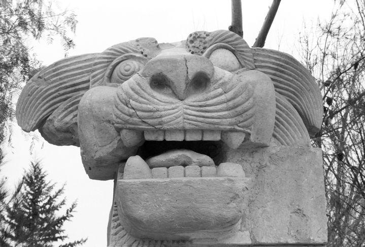 La statue du Lion d'Athéna découverte en 1977 par une mission polonaise dans le temple d'Al-Lat et photographiée ici en avril 1978.  (Yuryi Abramochkin / RIA Novosti )