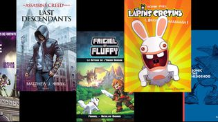 Depuis une dizaine d'années, des maisons d'édition spécialisées dans le livre de jeu vidéo se créent en France. (DTC / BAYARD / LES DEUX ROYAUMES / MANA BOOKS)