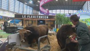 Un éleveur au salon de l'Agriculture 2019. (France 2)