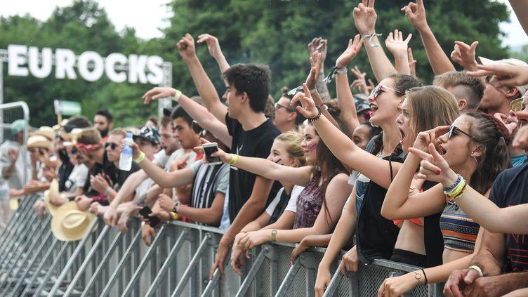 Des fans du groupe britannique Idles assistent à leur concert lors du festival des Eurockéennes de Belfort (Territoire de Belfort), le 7 juillet 2017. (SEBASTIEN BOZON / AFP)