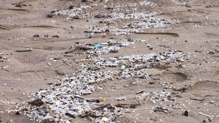 Billes de plastique sur une plage à Salou (Espagne), en novembre 2020. (GOOD KARMA PROJECTS)