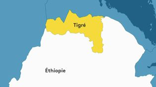 """Éthiopie : les États-Unis dénoncent un """"nettoyage ethnique"""" au Tigré (FRANCEINFO)"""
