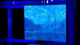 """""""Vue du Lac Léman"""", la toile de Gustave Courbet passée aux rayons  (France 3 / Culturebox)"""