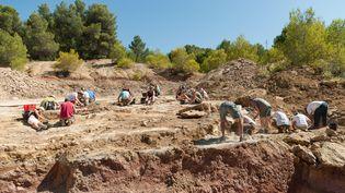 L'équipe de paléontologues en action sur le gisement de Velaux–la Bastide Neuve (© Xavier Valentin 2009). (L'équipe de paléontologues en action sur le gisement de Velaux–la Bastide Neuve (© Xavier Valentin 2009).)