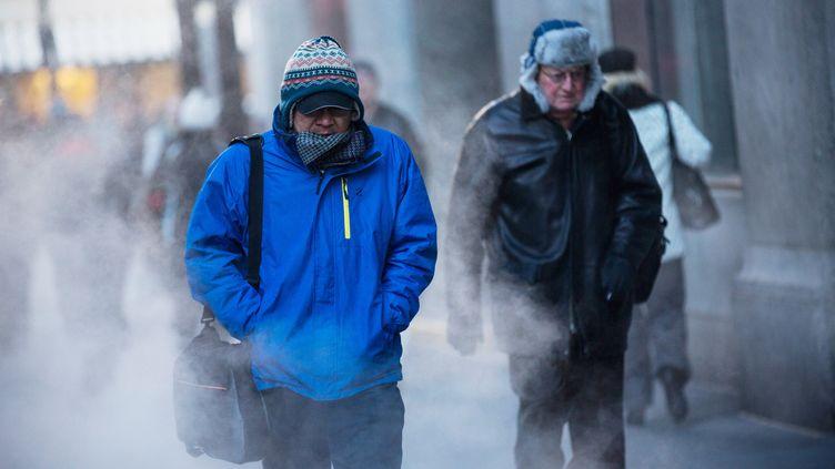 Des passants dans les rues de New York (Etats-Unis), sous un froid polaire, le 7 janvier 2014. (ANDREW BURTON / GETTY IMAGES NORTH AMERICA / AFP)
