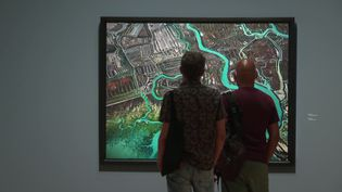 Edward Burtynsky est connu pour ses clichés aériens de paysages abîmés par l'homme. (France 3 Occitanie)