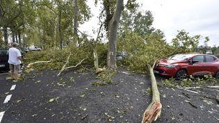 Des voitures écrasées par des arbres à Montauban (Tarn-et-Garonne), le 1er septembre 2015. (PASCAL PAVANI / AFP)