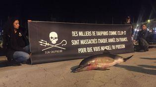 Les militants ont déposé un dauphin mort sur le port. (JULIE PACAUD/RADIOFRANCE)