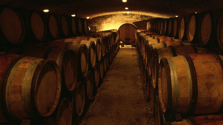Une cave à vins en Bourgogne, le 2 février 2006. (ELYAS BARBIER / BIOSPHOTO / AFP)