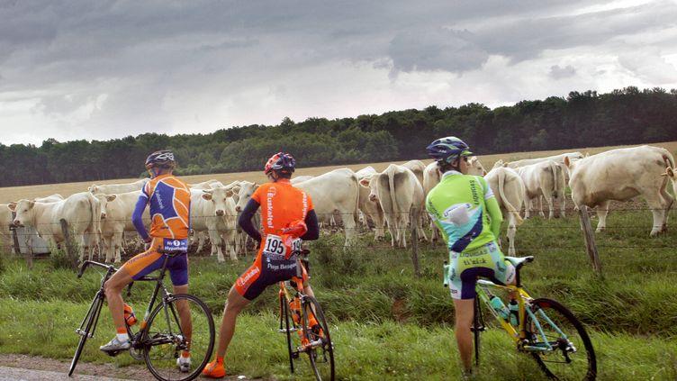 Trois coureurs du Tour de France en pleine pause-pipi, lors de l'étape Troyes-Nancy, le 7 juillet 2005. (FRANCK FIFE / AFP)