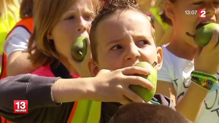 De jeunes Belges mangent des poires pour soutenir l'agriculture nationale face à l'embargo russe, mi-août 2014. ( FRANCE 2 / FRANCETV INFO)