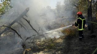 Un pompier lutte contre un incendie dans le massif des Maures, près de Cogolin (Var), le 17 août 2021. (NICOLAS TUCAT / AFP)