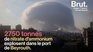 VIDEO. Explosion à Beyrouth : l'enquête d'Envoyé Spécial sur l'origine de la cargaison explosive (BRUT)