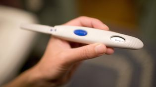 L'amendement surla vente de tests de grossesse hors pharmacies sera présentédans le cadre du projet de loi Consommation. (CHARLES GULLUNG / IMAGE SOURCE / AFP)