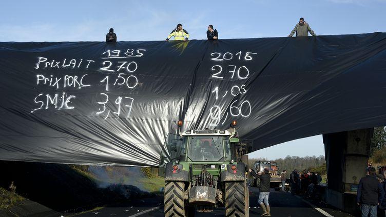 Des agriculteurs en colère bloquent la circulation sur l'autoroute A84,au niveaude Saint-Etienne-en-Coglès (Ille-et-Villaine), le 28 janvier 2016. (DAMIEN MEYER / AFP)
