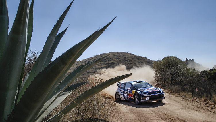 Jari-Matti Latvala (Volkswagen) se promène au Mexique (FRANCOIS BAUDIN / AUSTRAL)