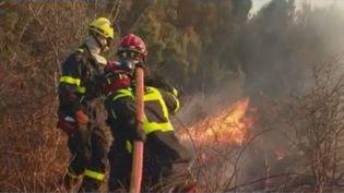 D'autres incendies font des ravages en Corse et se révèlent très difficiles à éteindre. La journaliste de France Télévisions Audrey Richier est en direct d'Ortale (Haute-Corse) pour faire le point sur la situation. (FRANCE 2)
