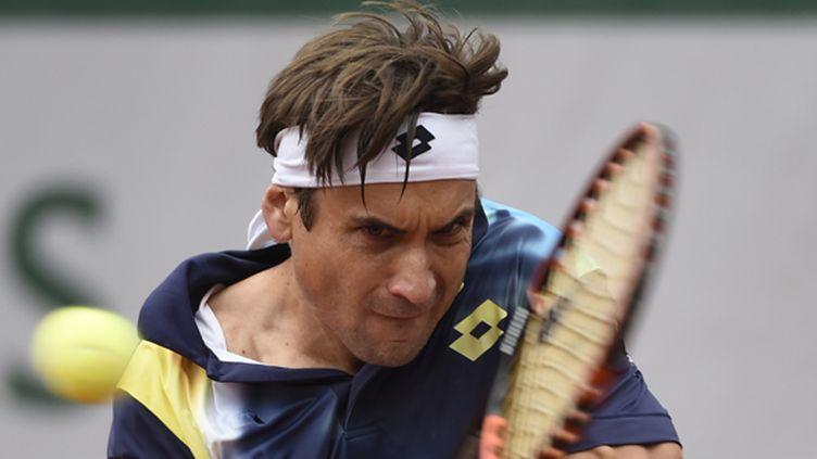 David Ferrer (DOMINIQUE FAGET / AFP)