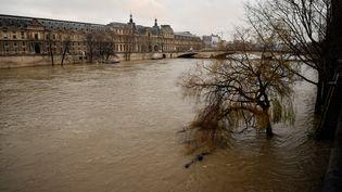 La Seineest censée monter à 6,2 mètres le 27 janvier près du musée du Louvre. (CHRISTOPHE SIMON / AFP)