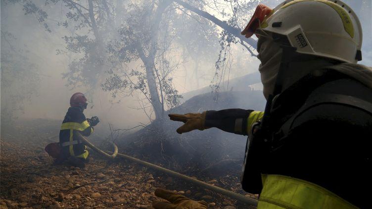 Des pompiers en pleine action sur un feu de fôret. Photo d'illustration. (SOUILLARD BRUNO / MAXPPP)