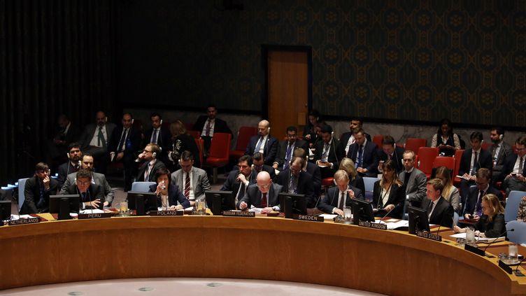 Réunion sur la Syrie au Conseil de sécurité de l'ONU, à New York, le 22 février 2018. (MOHAMMED ELSHAMY / ANADOLU AGENCY / AFP)