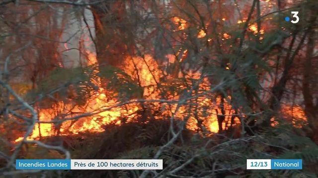 Deux feux se sont déclarés samedi 28 août dans les Landes. Le vent soufflait très fort à Mimizan et à Seignosse, où un camping a dû être évacué. Dimanche matin, les feux ne se propagent plus.